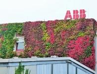 ABB - Außerordentlich Bunte Blätter